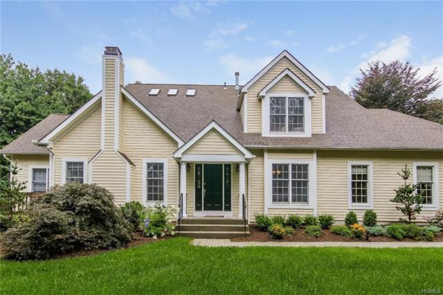 49 Agnew Farm Road, Armonk, NY 10504 (MLS #4908064) :: Mark Seiden Real Estate Team