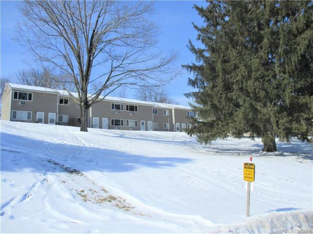 11 Fishkill Glen Drive F, Fishkill, NY 12524 (MLS #4908101) :: Mark Boyland Real Estate Team