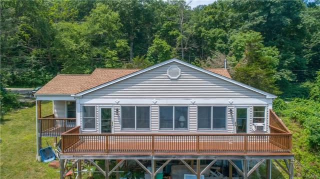 1408 Route 292, Holmes, NY 12531 (MLS #4908105) :: William Raveis Baer & McIntosh