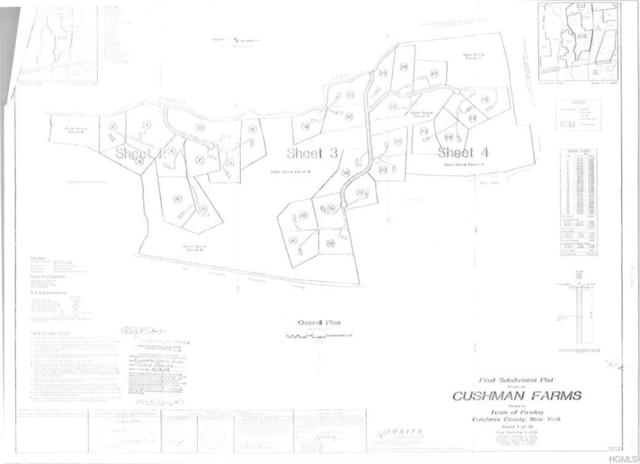 Lot 23 & 24 - Fox Ridge Drive, Pawling, NY 12564 (MLS #4908119) :: Shares of New York