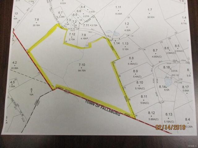 Mcguire Road, Woodbourne, NY 12788 (MLS #4908160) :: Mark Boyland Real Estate Team