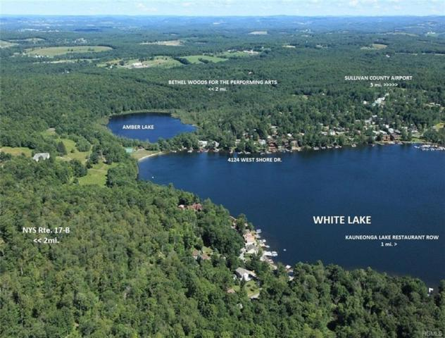 4124 West Shore Drive, Kauneonga Lake, NY 12749 (MLS #4908537) :: Shares of New York