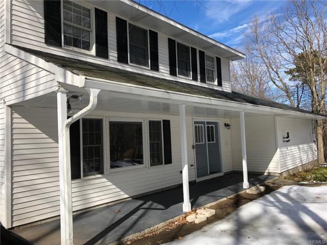 100 Brower Road, Monroe, NY 10950 (MLS #4908653) :: Stevens Realty Group