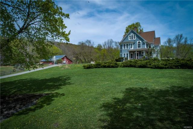 162 Old Pawling Road, Pawling, NY 12564 (MLS #4908806) :: William Raveis Legends Realty Group