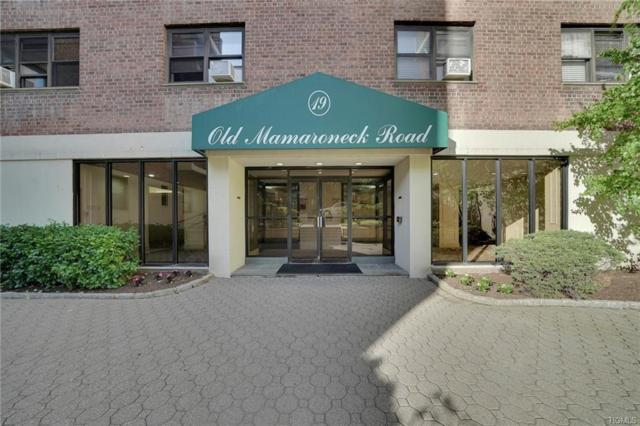 19 Old Mamaroneck Road 3E, White Plains, NY 10605 (MLS #4908848) :: Shares of New York