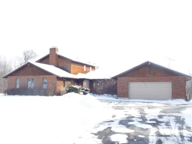 53 Little Collabar Road, Montgomery, NY 12549 (MLS #4908884) :: Shares of New York
