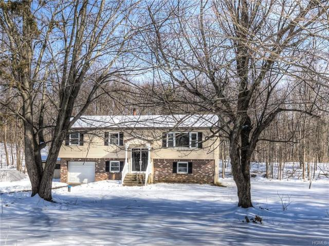 142 Freetown Road, Wallkill, NY 12589 (MLS #4908960) :: Mark Seiden Real Estate Team