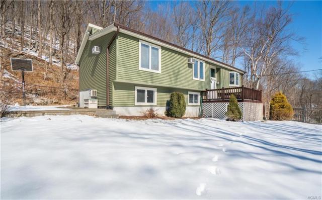 1001 Peekskill Hollow Road, Putnam Valley, NY 10579 (MLS #4909289) :: Mark Seiden Real Estate Team