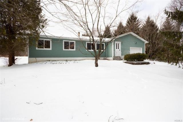 164 Gibson Hill Road, Chester, NY 10918 (MLS #4909321) :: Mark Boyland Real Estate Team