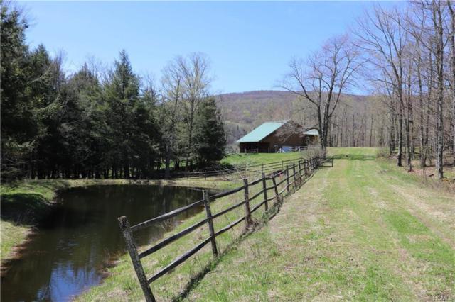 TBD Alder Lake Road, Livingston Manor, NY 12758 (MLS #4909429) :: Stevens Realty Group
