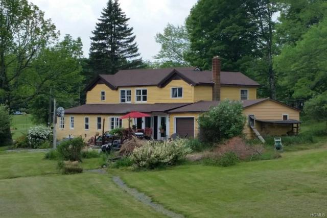 114 Castle Hill Road, Parksville, NY 12768 (MLS #4909585) :: Stevens Realty Group