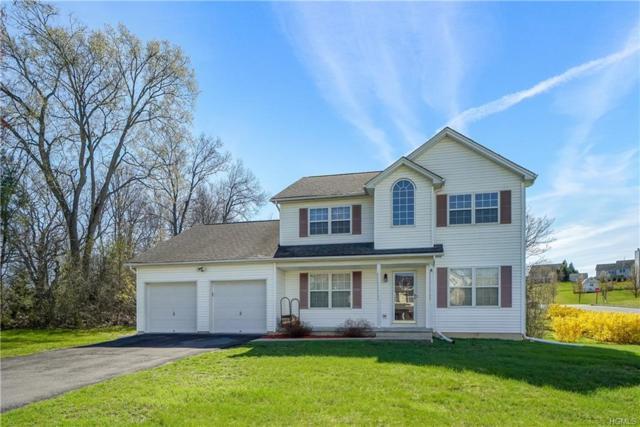 5 June Road, Chester, NY 10918 (MLS #4909844) :: Mark Seiden Real Estate Team