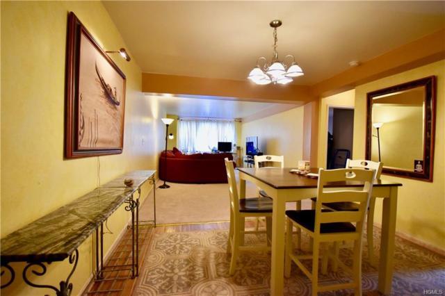 117 Highland Avenue 2C, Ossining, NY 10562 (MLS #4909899) :: Mark Seiden Real Estate Team