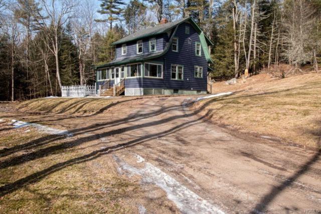 65 Highland Lake Road, Eldred, NY 12732 (MLS #4910020) :: Mark Seiden Real Estate Team