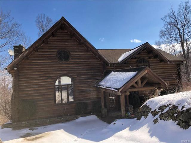 79 Timberline Trail, Esopus, NY 12429 (MLS #4910304) :: William Raveis Legends Realty Group