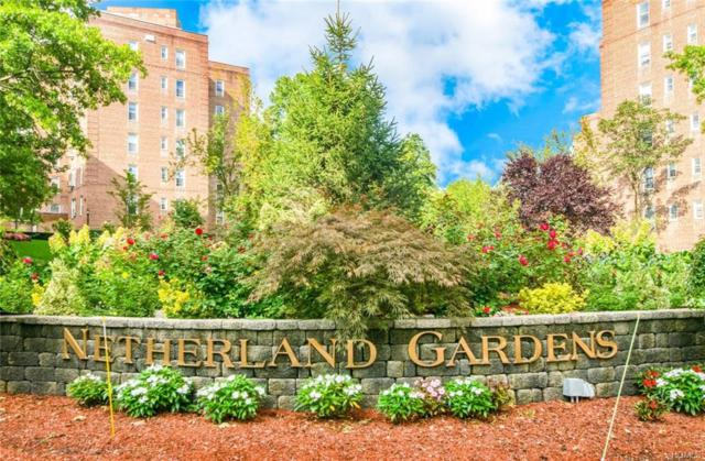 5615 Netherland Avenue 6A, Bronx, NY 10471 (MLS #4910496) :: William Raveis Legends Realty Group