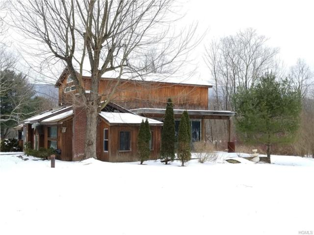 10 Fawn Road, Saugerties, NY 12477 (MLS #4910581) :: William Raveis Legends Realty Group
