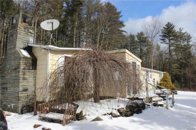 692 County Route 31, Glen Spey, NY 12737 (MLS #4910806) :: Mark Seiden Real Estate Team