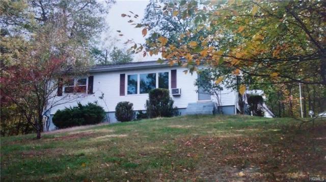 28 Marl Road, Cragsmoor, NY 12420 (MLS #4910853) :: Mark Seiden Real Estate Team