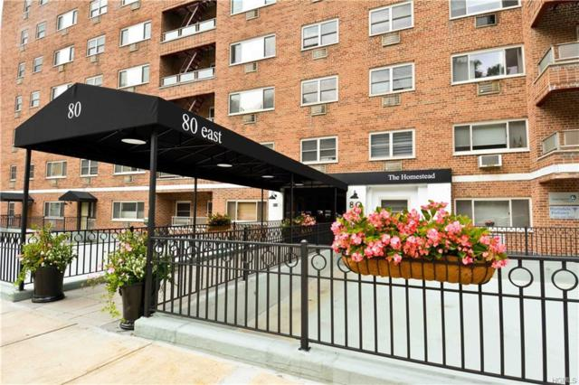 80 E Hartsdale Avenue #710, Hartsdale, NY 10530 (MLS #4910999) :: William Raveis Legends Realty Group