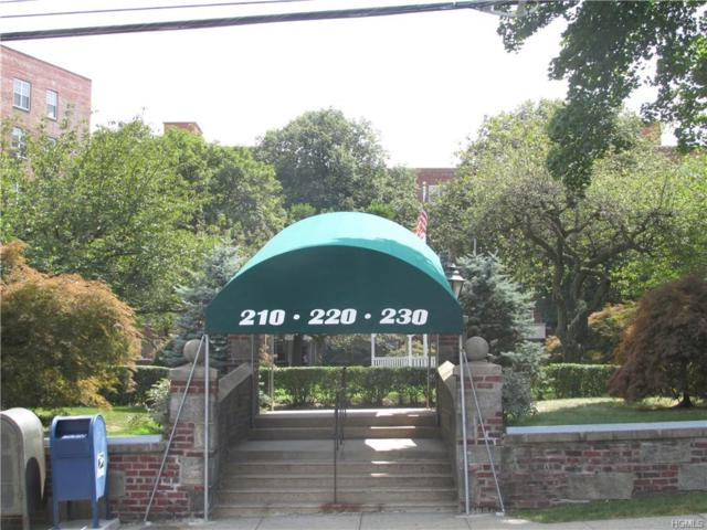 220 Pelham Road 5R, New Rochelle, NY 10805 (MLS #4911040) :: William Raveis Legends Realty Group