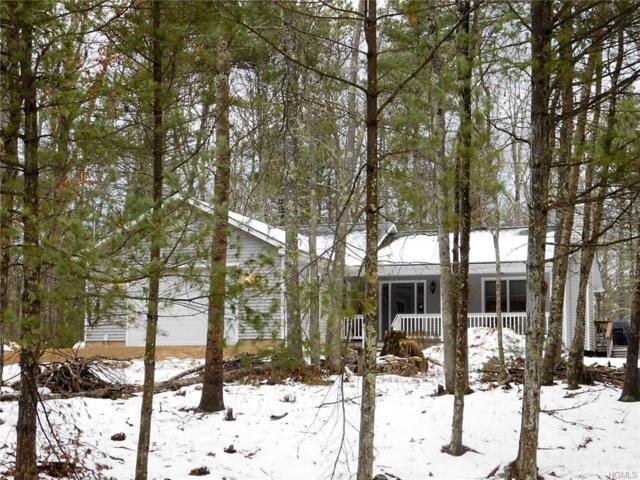 23 Walters Farm Road, Yulan, NY 12792 (MLS #4911080) :: Mark Seiden Real Estate Team