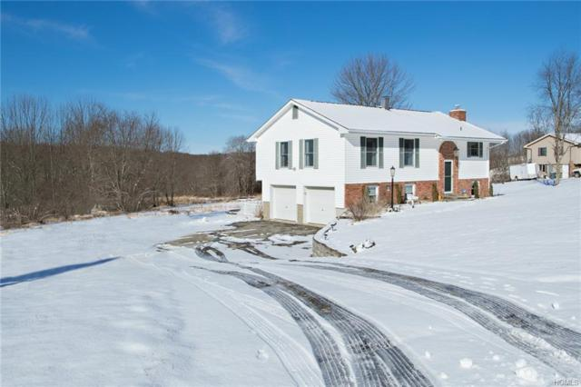 31 Galle Lane, Lagrangeville, NY 12540 (MLS #4911081) :: Mark Seiden Real Estate Team