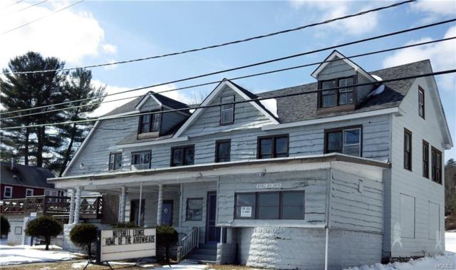 6692 State Route 52, Lake Huntington, NY 12752 (MLS #4911344) :: Shares of New York
