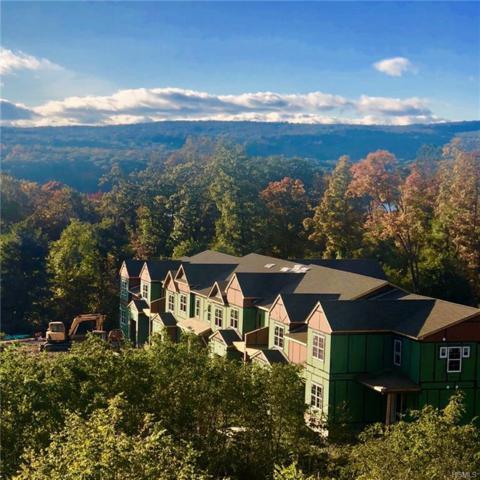 287 Hudson View Terrace, Hyde Park, NY 12538 (MLS #4911569) :: Mark Seiden Real Estate Team