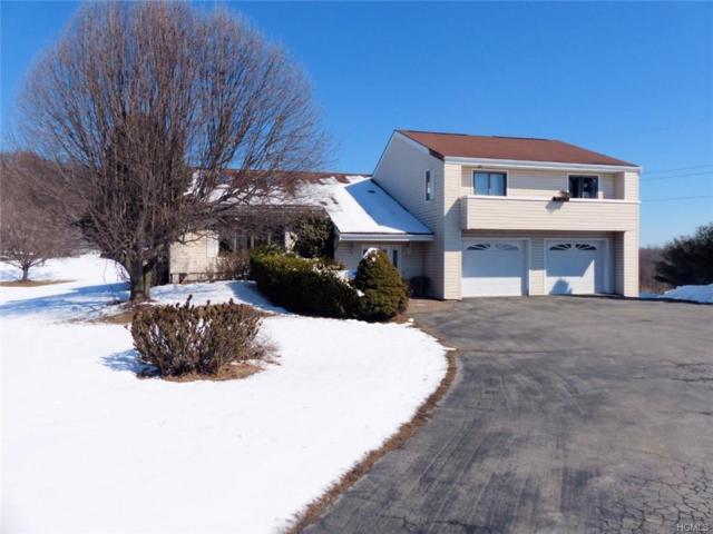 121 Macks Lane, Highland, NY 12528 (MLS #4911865) :: Mark Seiden Real Estate Team