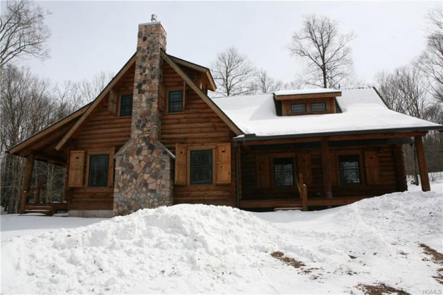 10 Rambling Brook Lane, Equinunk, NY 18417 (MLS #4912283) :: William Raveis Legends Realty Group