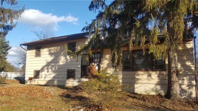 9 Regimental Place, New Windsor, NY 12553 (MLS #4912528) :: Shares of New York
