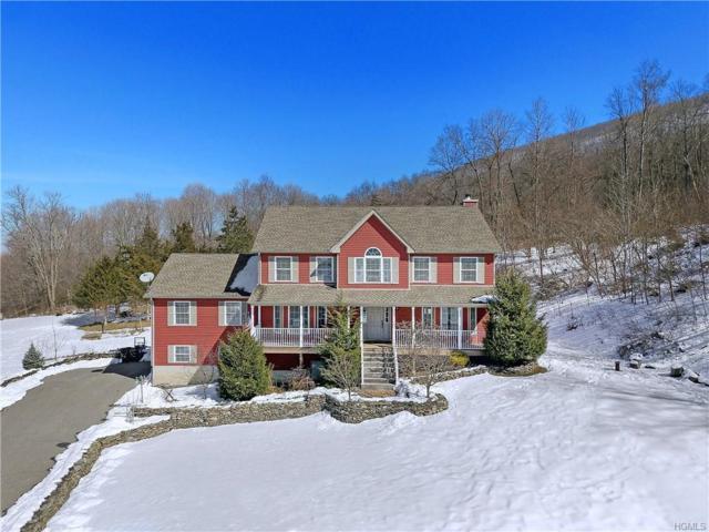 14 Brian Court, Salisbury Mills, NY 12577 (MLS #4912768) :: Mark Seiden Real Estate Team
