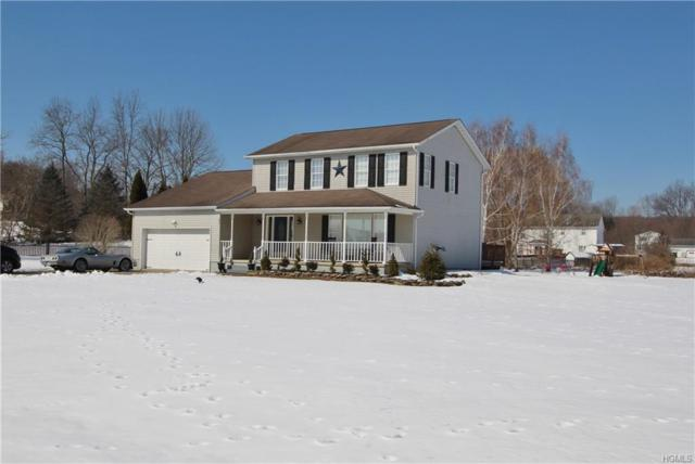 47 Sunrise Drive, Johnson, NY 10933 (MLS #4912914) :: Mark Seiden Real Estate Team