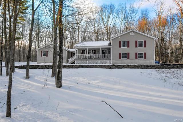 26 Hawk Hills Circle, Otisville, NY 10963 (MLS #4913469) :: William Raveis Baer & McIntosh