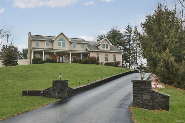18 Tanglewood Lane, Poughkeepsie, NY 12603 (MLS #4913547) :: Mark Seiden Real Estate Team