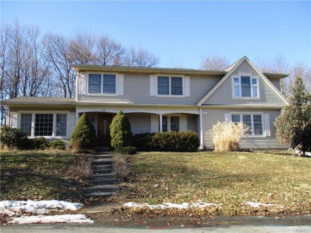 45 Roe Avenue, Cornwall On Hudson, NY 12520 (MLS #4913833) :: Mark Seiden Real Estate Team