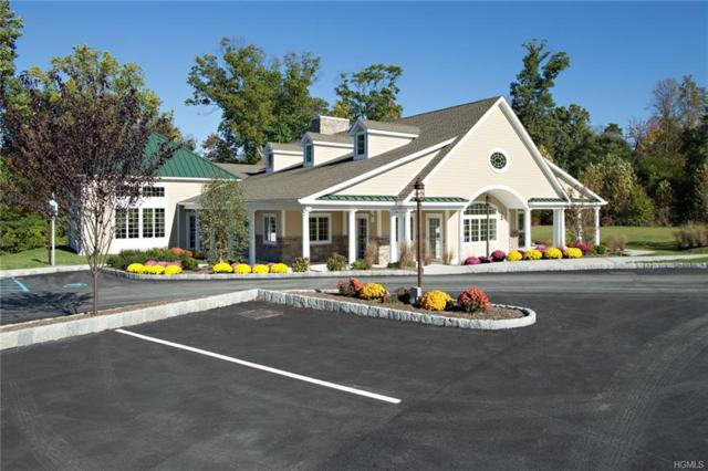 295 Hudson View Terrace, Hyde Park, NY 12538 (MLS #4913862) :: Mark Seiden Real Estate Team