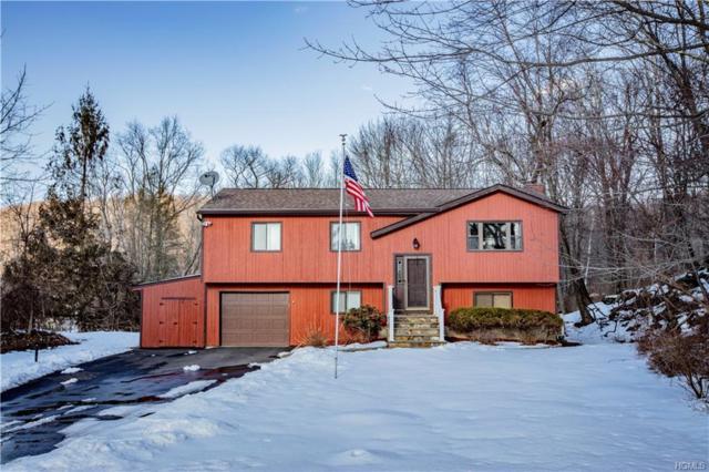 82 Mountain View Drive, Holmes, NY 12531 (MLS #4914015) :: Mark Seiden Real Estate Team