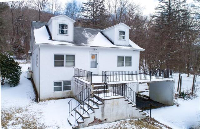 644 Route 292, Holmes, NY 12531 (MLS #4914033) :: Mark Seiden Real Estate Team