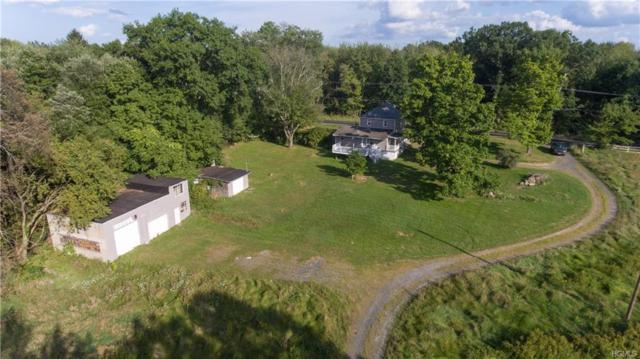 2374 Bruynswick Road, Wallkill, NY 12589 (MLS #4914142) :: Mark Seiden Real Estate Team