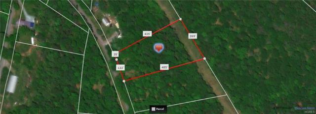 Lot #6 Tyler Road, Cochecton, NY 12726 (MLS #4914202) :: Mark Seiden Real Estate Team