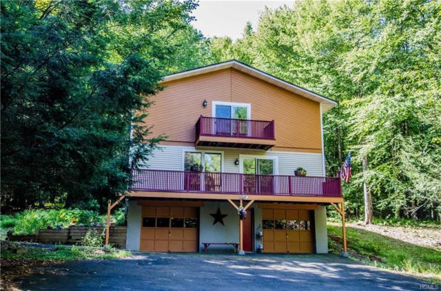 47 Johns Road, Lake Huntington, NY 12752 (MLS #4914207) :: Mark Seiden Real Estate Team
