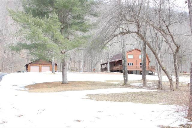 6003 Cty Hwy 30, East Branch, NY 13756 (MLS #4914274) :: Shares of New York