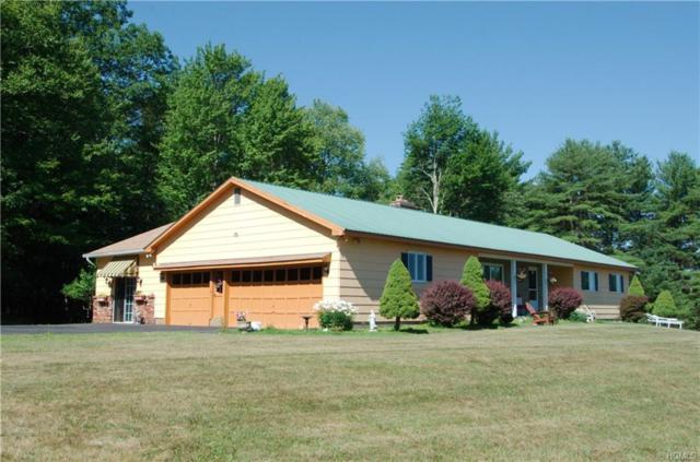 49 Johns Road, Lake Huntington, NY 12752 (MLS #4914324) :: Mark Seiden Real Estate Team
