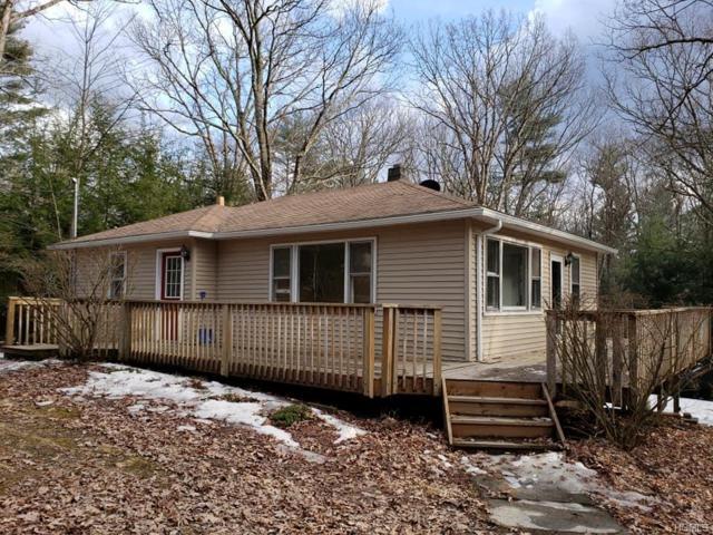 17 Schumacher Pond Road, Barryville, NY 12719 (MLS #4914382) :: Mark Seiden Real Estate Team