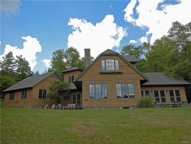 27 Big Pond Road, Lew Beach, NY 12406 (MLS #4914534) :: Mark Seiden Real Estate Team