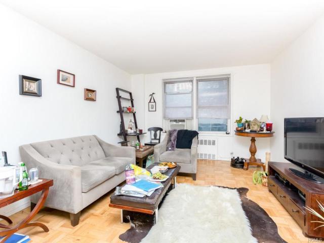 3210 Arlington Avenue 1G, Bronx, NY 10463 (MLS #4914593) :: William Raveis Legends Realty Group