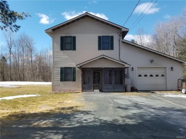 6320 State Route 52, Cochecton, NY 12726 (MLS #4914605) :: Mark Seiden Real Estate Team