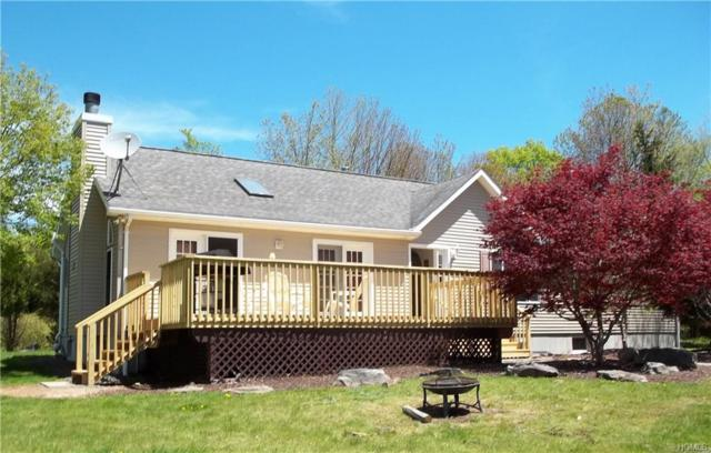 10 Black Bear Road, Parksville, NY 12725 (MLS #4914627) :: William Raveis Legends Realty Group